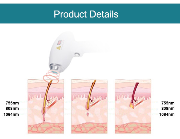 SW-808E-31 Triple wavelength 1064nm 755nm 808nm diode laser system brown hair removal men back hair removal beauty machine