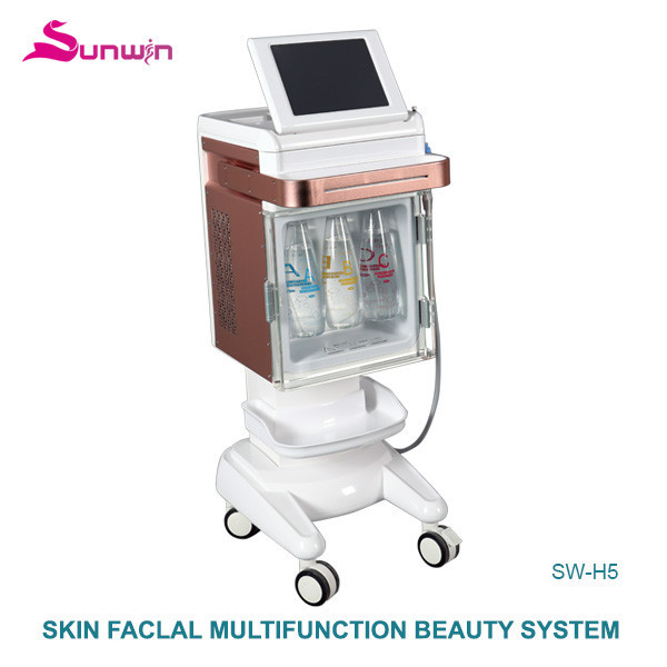SW-H5 oxygen Hydro Facial beauty machine aqua water facial remove acne skin moisturizing remove blackhead whitening machine price